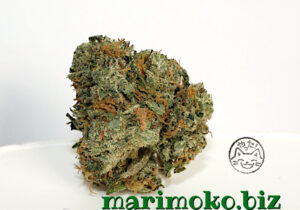 MMJ Express – Strawberry Cough