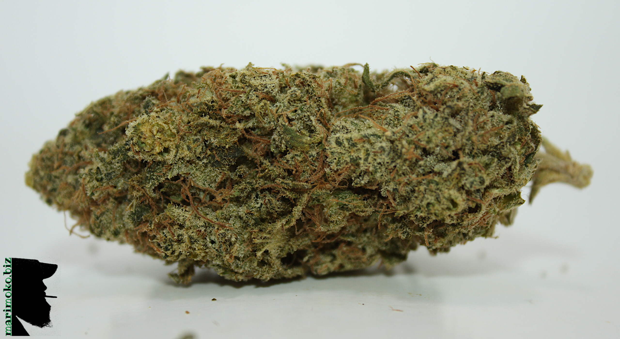 Pink Gorilla From Greens And Goods