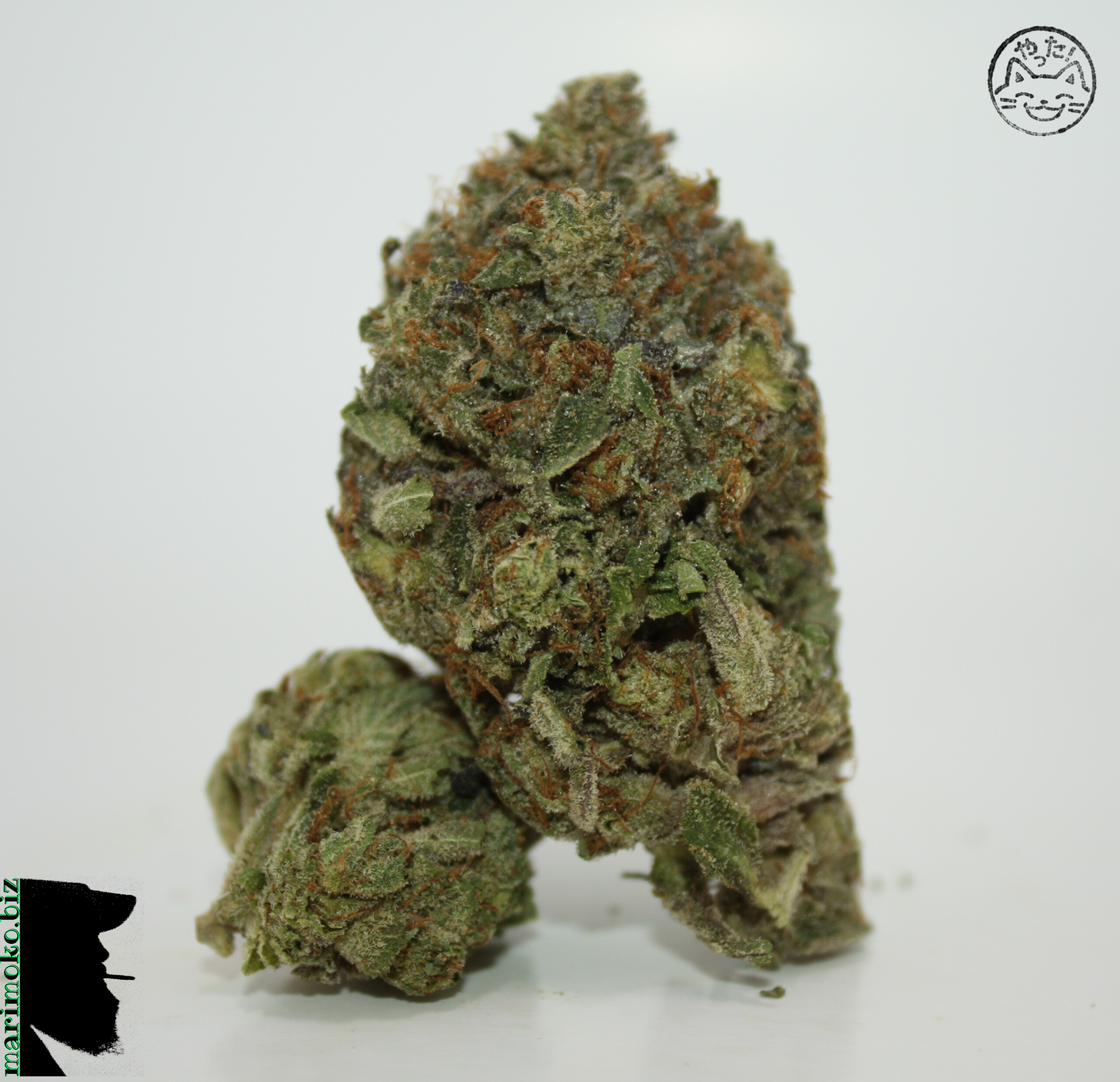 Ugly Unicorn From Order Weed Online